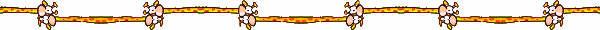 BARRAS SEPARADORAS 4 328006cjkwuf8d8z