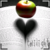 A breve segunda vida de Bree Tanner - Uma novela de Eclipse 983726xehrponohe